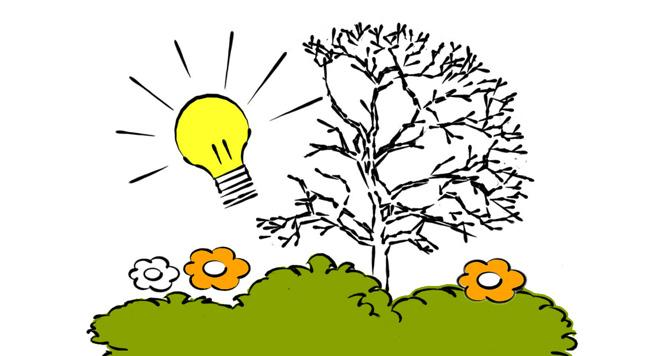 Beratung und Tipps zur Gartengestaltung