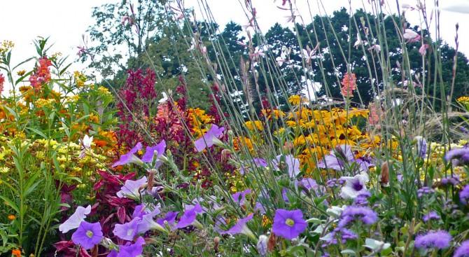 Pflanzkonzepte von Gartenplanung Schwerteck